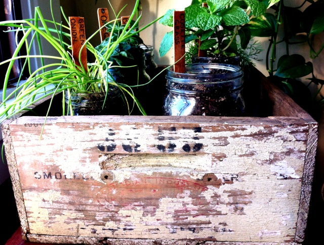 DIY Rustic Herb Box | Blue Owl Treats