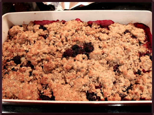 Blue Owl Treats | Blackberry Crisp