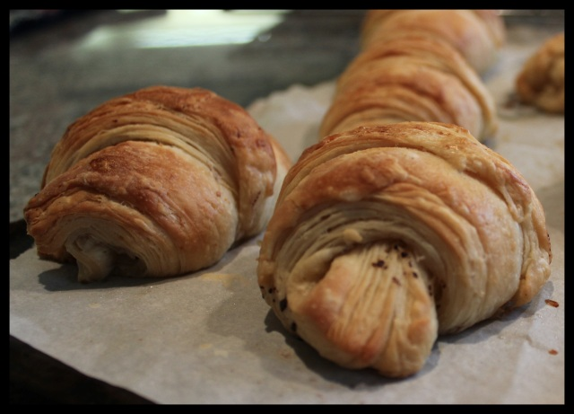 Pain au Chocolat | Blue Owl Treats