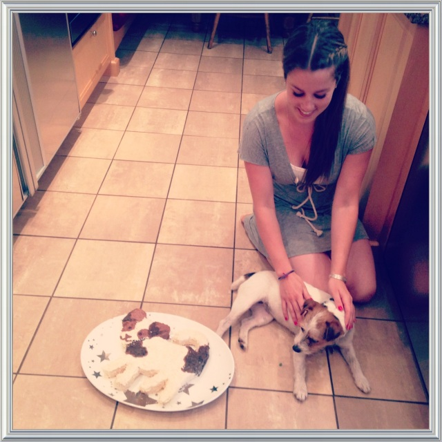 Puppy Cake | Blue Owl Treats