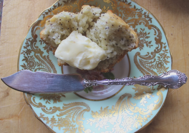 Lemon Poppyseed Muffins | Blue Owl Treats
