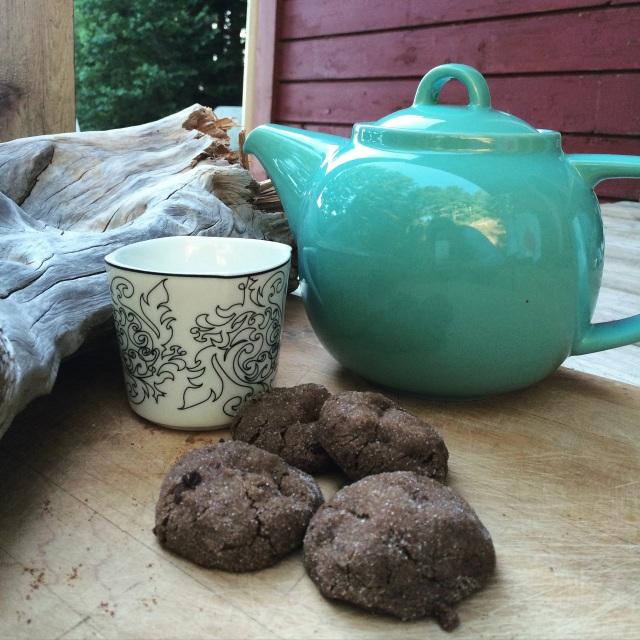 Camp Cookies | Blue Owl Treats